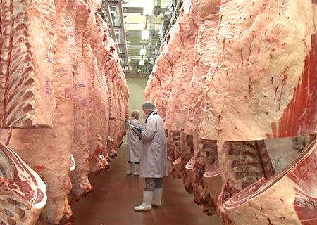 食肉市場イメージ