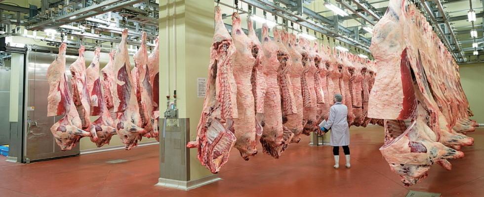 福岡食肉市場株式会社
